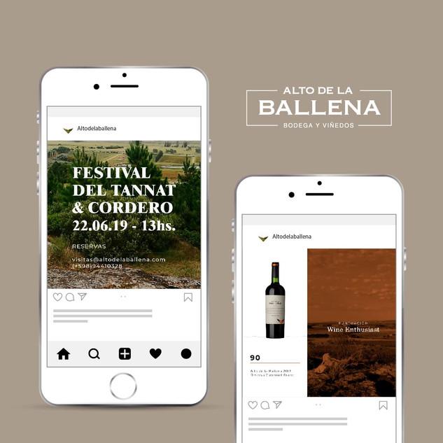 Alto de la Ballena - Punta Ballena - Redes Sociales