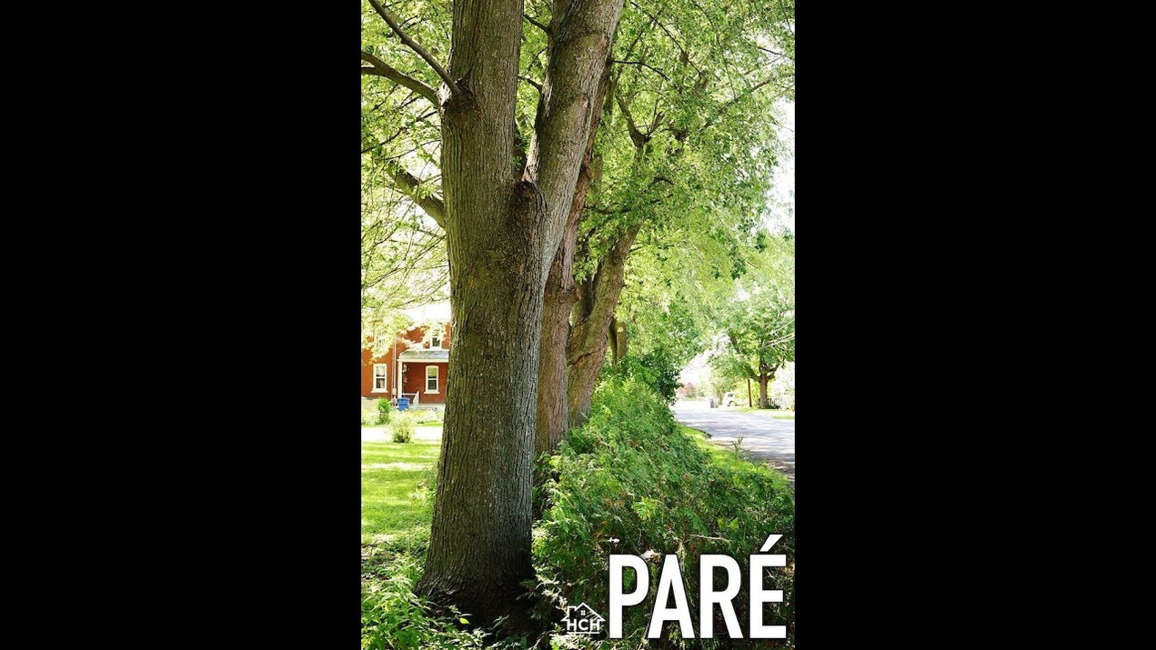 Pare Project