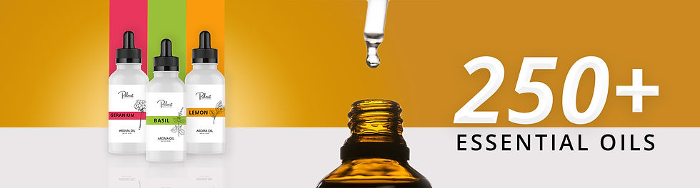 250+essential oils-banner.jpg