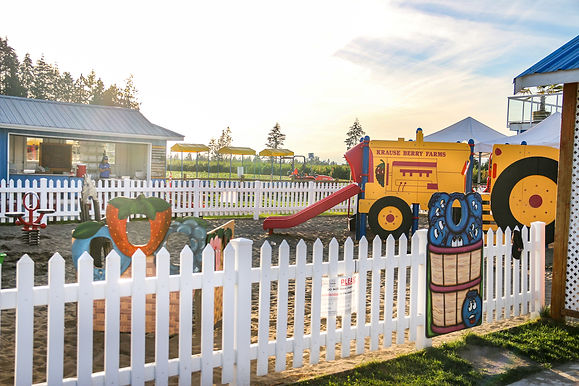 places to play for kids at Krause Berry Farms, things to do for kids, family fun, play ground