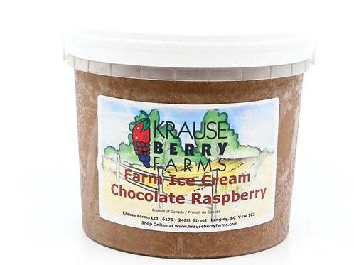 Chocolate Raspberry Ice Cream