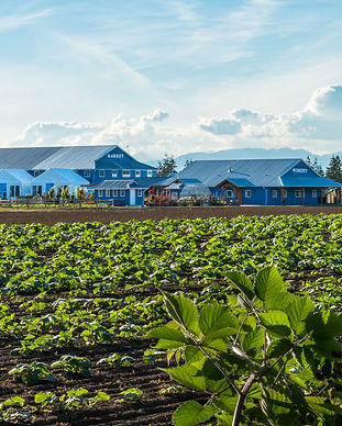 edited farm exterior shots from road hr