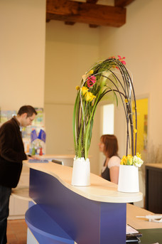 Stage Art Floral Collectivités