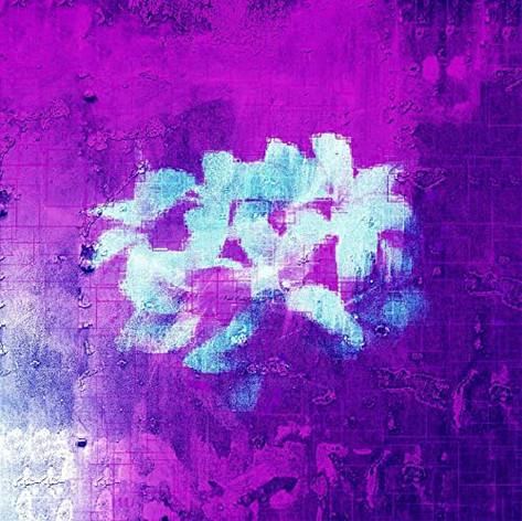 Moh Flow / Purple Flowers