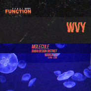 WVY x D3