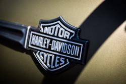 180701 Harley Davidson small-09296