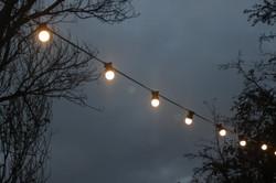 Festoon Lighting for Weddings
