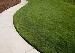 Lay a garden path