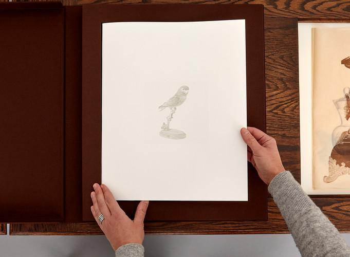 Still installation (artist's book, cover page), 2018