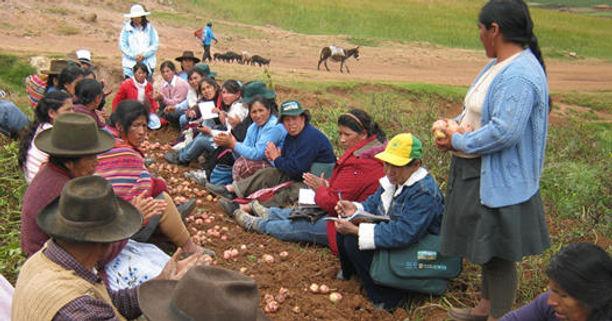 mujeres_agricultoras_de_quispicanchi_Fue