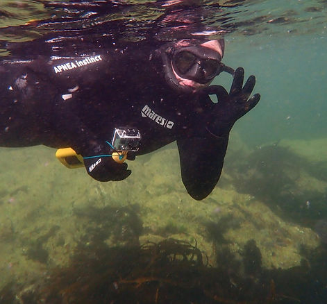 Guided Snorkelling one to one