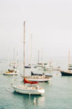 Monterey Bay, California by Megan Mullins Photography