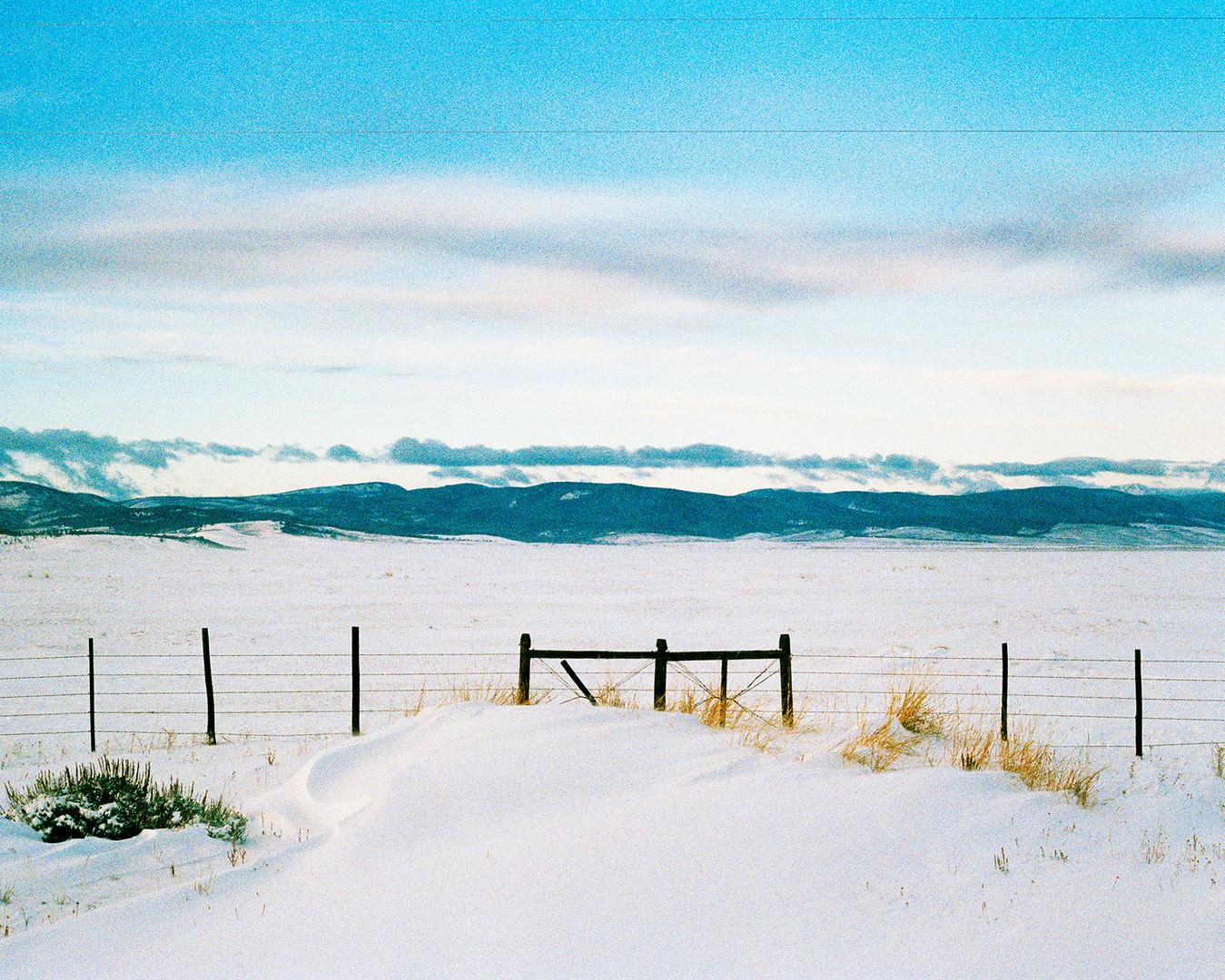 Megan Mullins Photography in Bitterroot Valley, Montana
