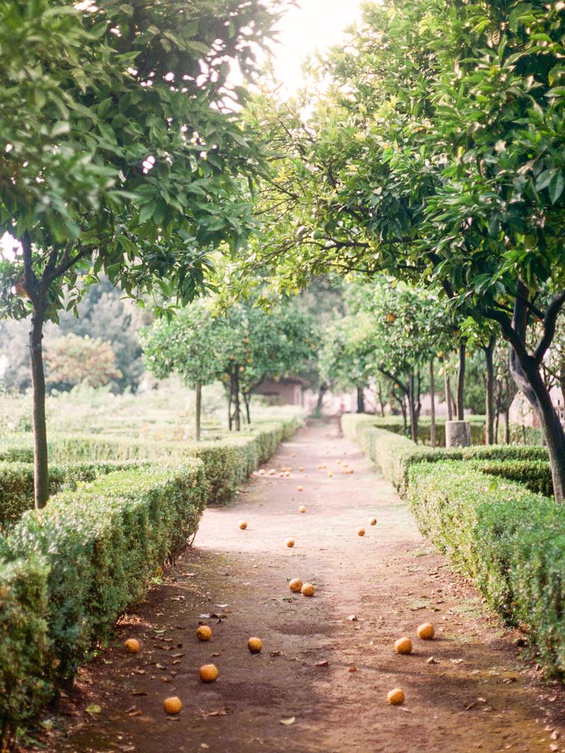 Megan Mullins Photography in Farnese Gardens, Rome