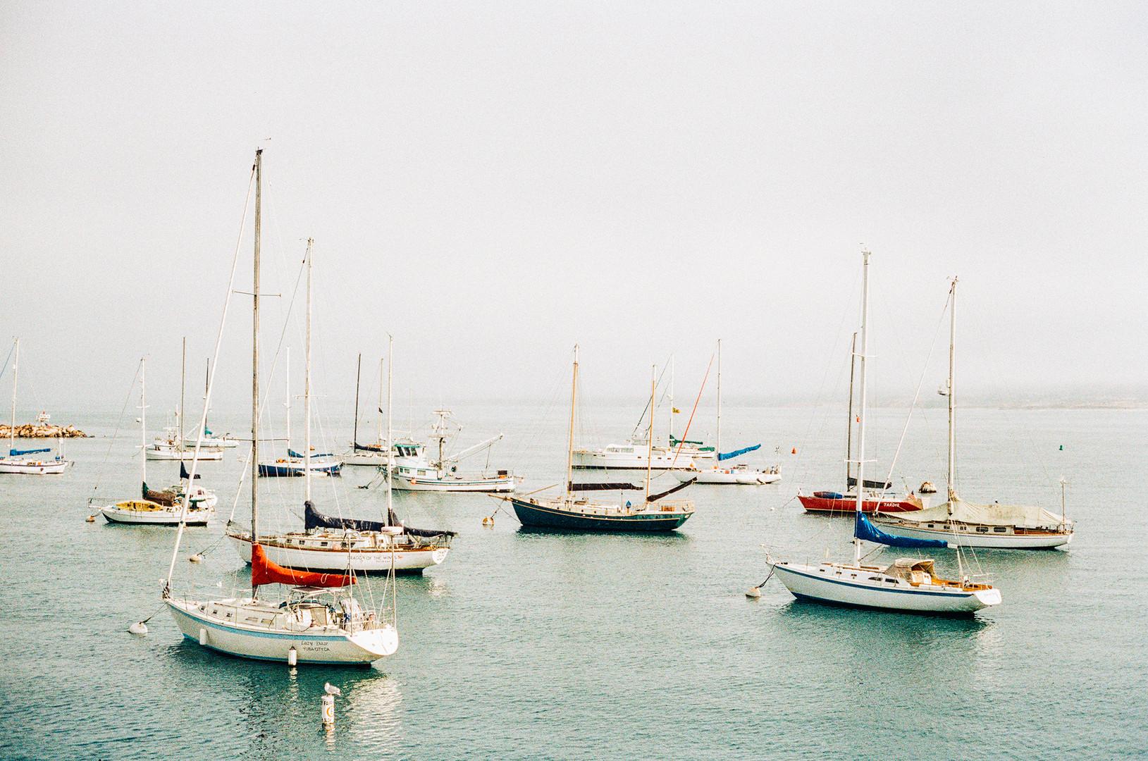 Megan Mullins Photography in Monterey Bay, CA