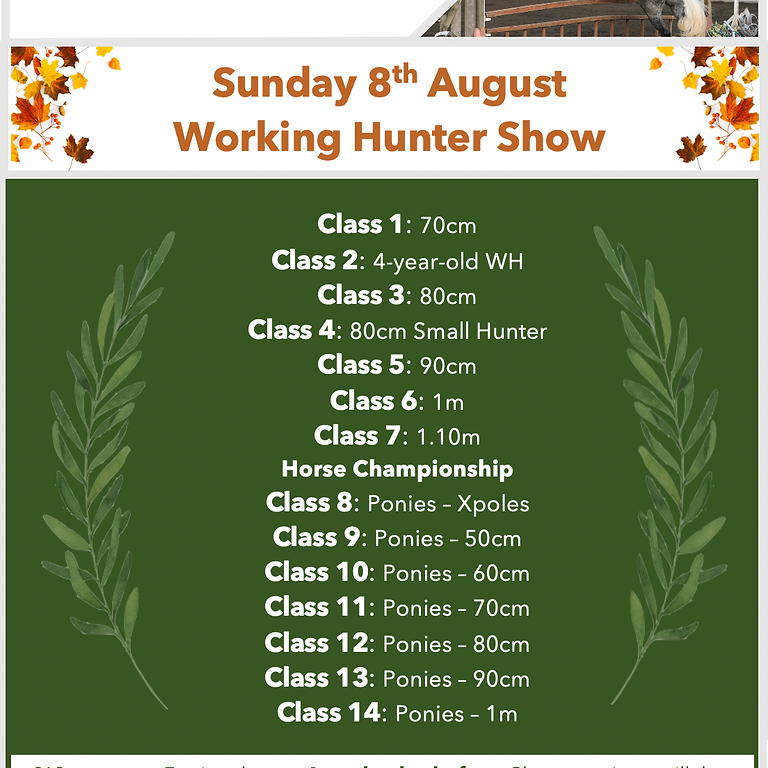 8th August Horse and Pony Working Hunter Show