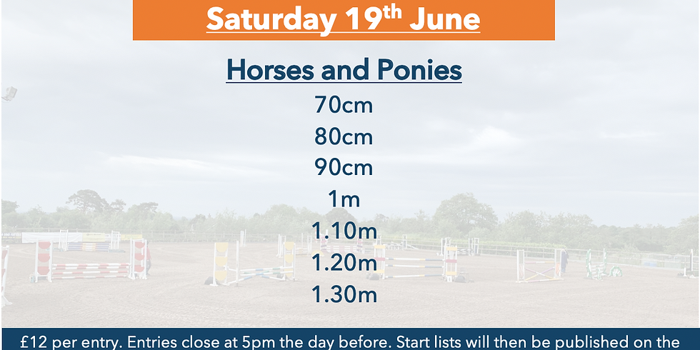 19th June Horse and Pony Training Show