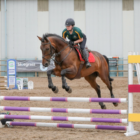 18th June 2020 Unregistered Showjumping Horse Show