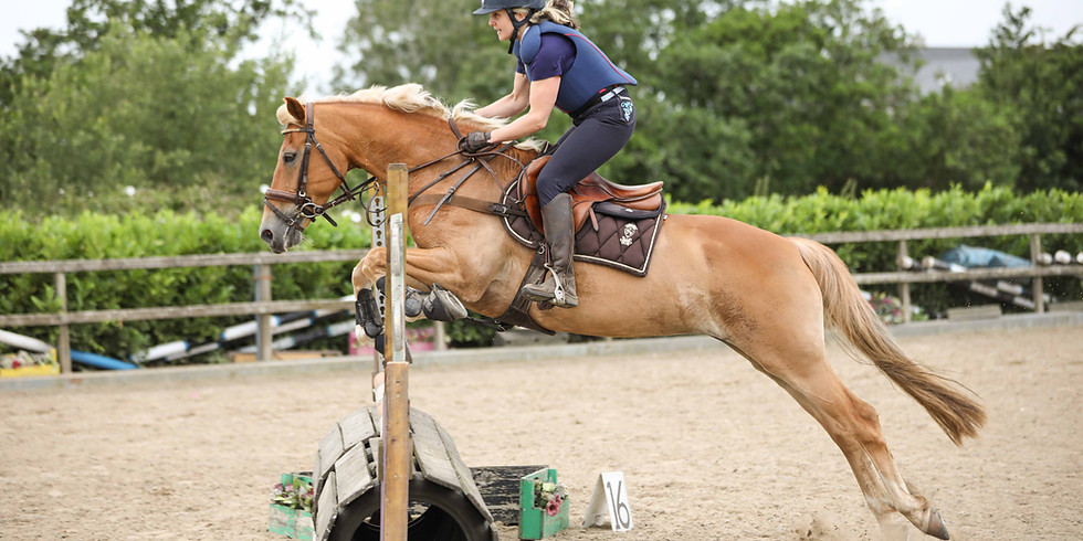 8th August 2020 Unregistered SJ Horse and Pony Show