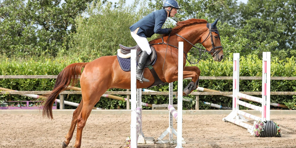 9th January Training Show for Horses and Ponies