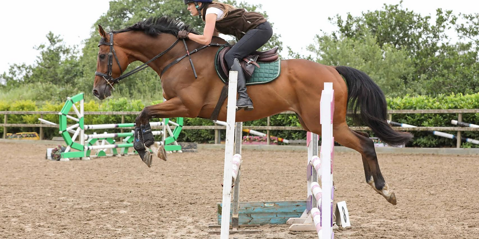 24th April Training Show for Horses and Ponies