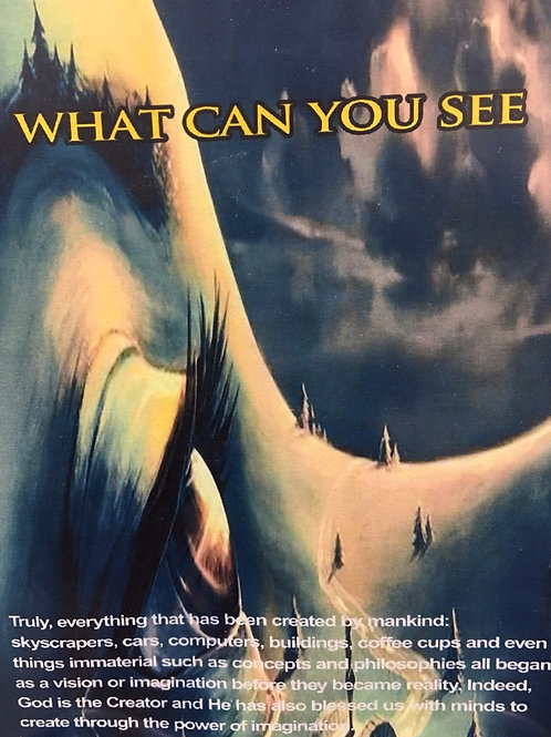 What Can You See - Audio Cd Set