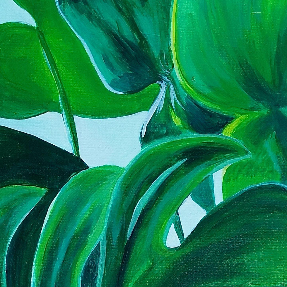 monstera2-busojulia.jpg