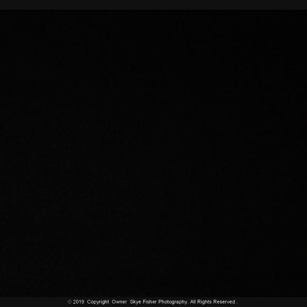 Regular Black Backdrop