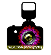 REVISED sky-fisher-photography-5.png