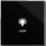 swith1 button black.png