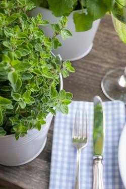 Tischdeko-Restaurant-Kräuter