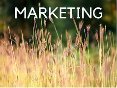 Marketing job opportunities in Western New York, Buffalo, New York
