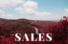 Sales job opportunities in Western New York, Buffalo, New York