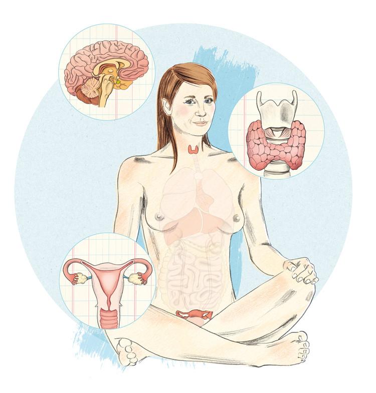 Anne_Mair_FUER_SIE_Gendermedizin_Frauenm