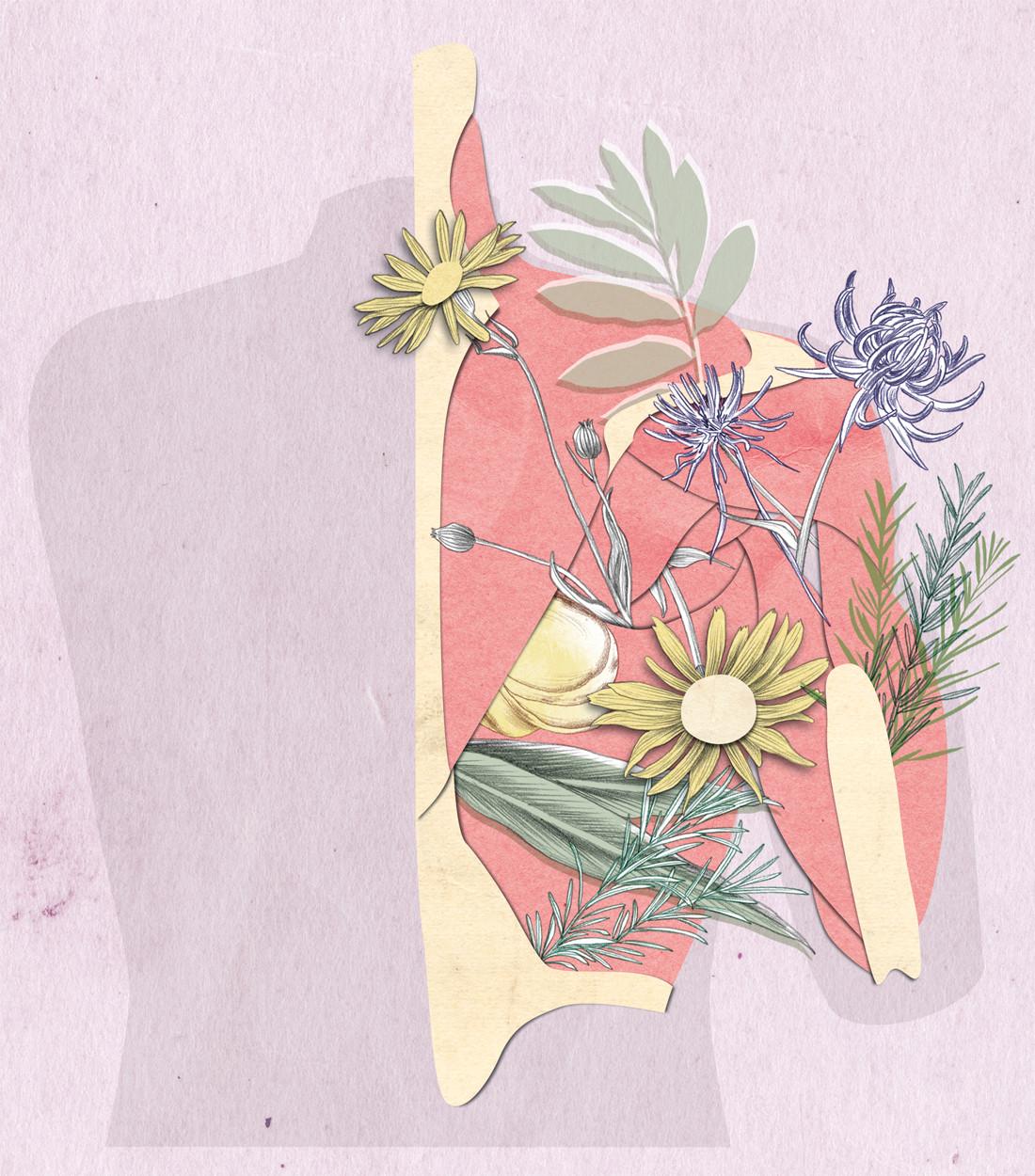 Anne-Mair-illustration-natuerlich-magazi