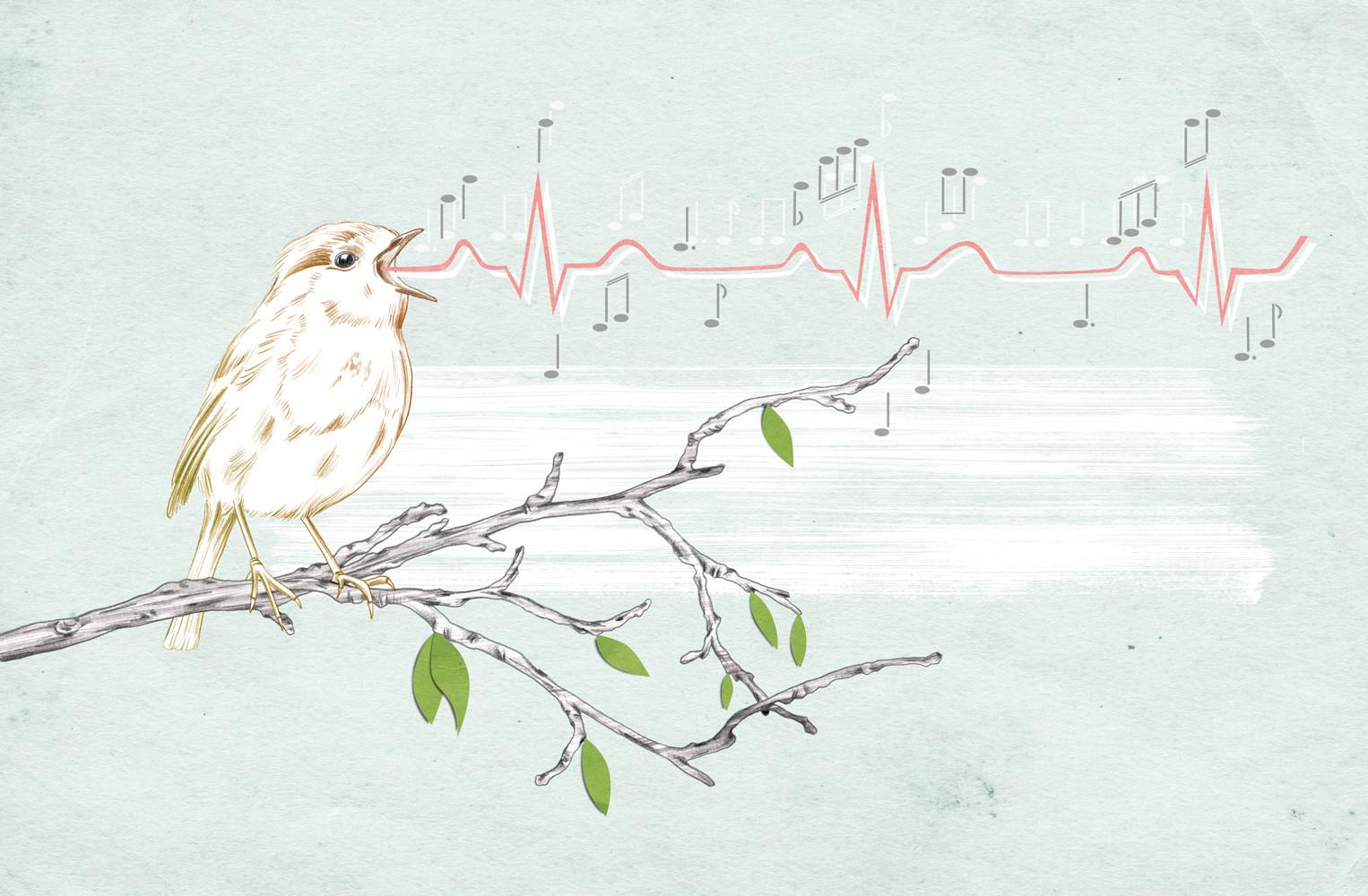 Anne-Mair-natuerlich-Magazin-Gesundheit-