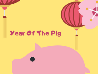 Learn How The Year Of The Pig Will Impact Your Health and Some Easy Tips To Improve Your Health