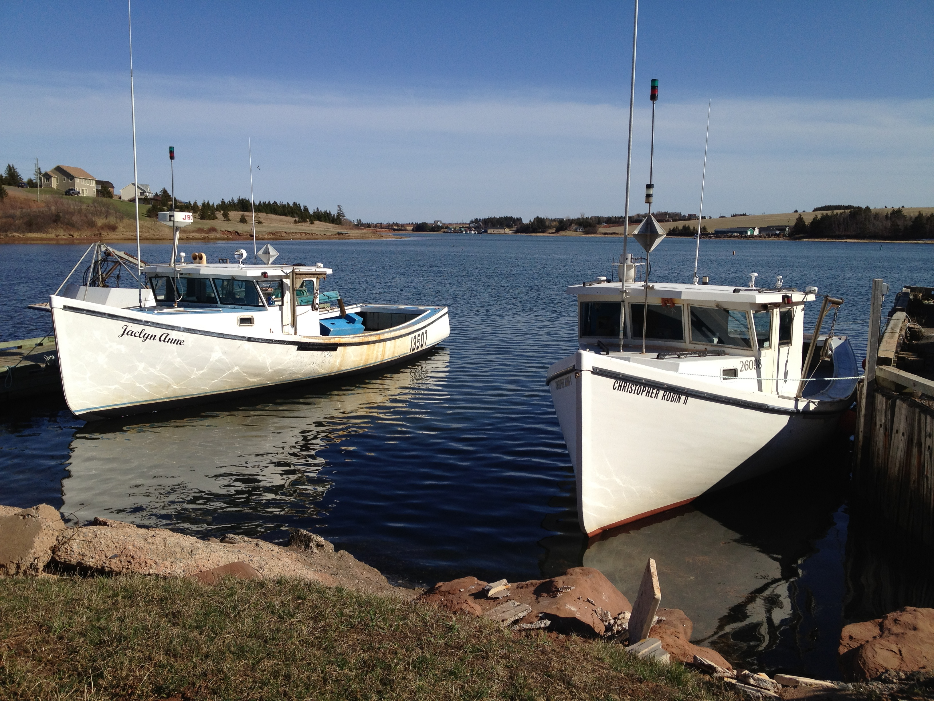 Local lobster boats