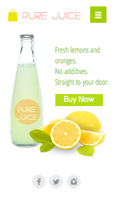 See All Templates website templates –  Fresh Juices