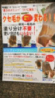DSC_0986 (2).jpg