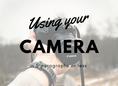 Understanding How To Use Your Camera in 5 Paragraphs or Less!