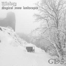wintery fronte - Copia.jpg