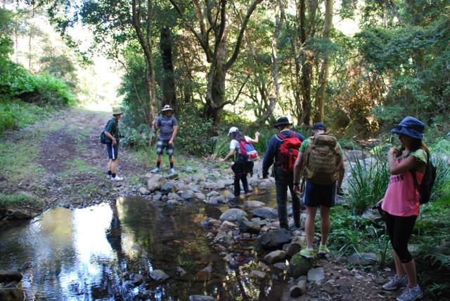 Creek crossing on way to Upper Portals, Mt Barney, Queensland, Australia