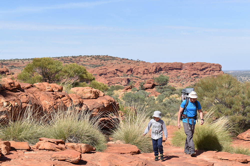 Walking to great heights at Kings Canyon