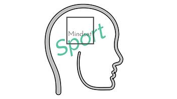 Mindset Sport Silver.png