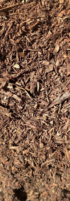 Jungle Mulch