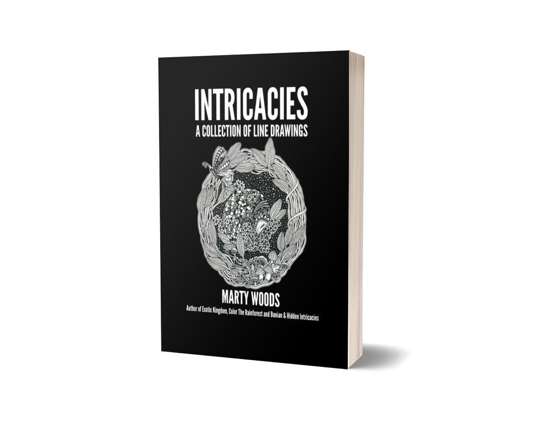 Intricacies Book Cover