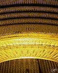 Golden Paths2.jpg