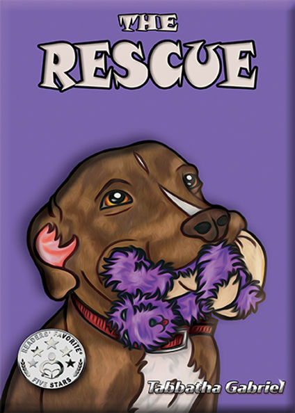The Rescue.jpg