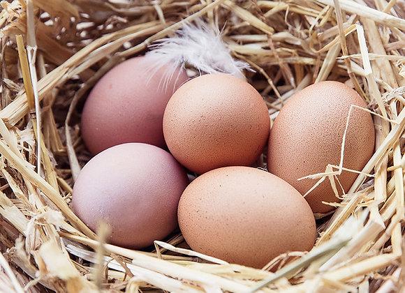 Free Range Eggs - 1/2 Dozen